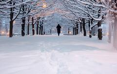Stock Photo of people walking a winter park with snow  in sunset