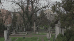Old haunted cemetery [flycam] downhil Stock Footage