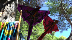 Europe Spain Balearic Ibiza hippie market es canar 124 dragons against sky Stock Footage