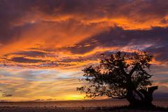 Dramatic fiery orange sunset in siquijor Stock Photos