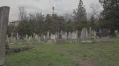 Old haunted cemetery Stock Footage