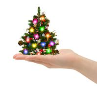 Christmas tree in hand Stock Photos