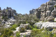 impressive karst landscape - stock photo