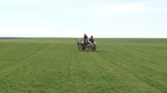 Horse and carriage in the meadow Stock Footage