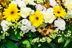 Beautiful bouquet with flowers Stock Photos