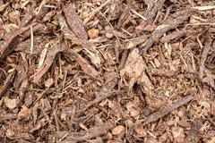 garden bark mulch texture - stock photo