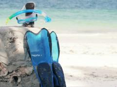 Flippers and diving mask by the beach, vacations concept NTSC Stock Footage