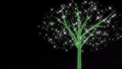 Positive energy tree growing. Stock Footage