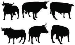 eps 10 vector silhouettes of cattle collection in stand left position - stock illustration