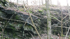 Mammoth Cave National Park Rack Focus Trees & Cliff Stone HD Stock Footage