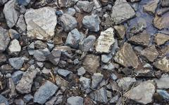 Detail of some small stones and pebbles. Stock Photos
