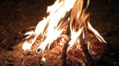Burning Bonfire at Night HD Stock Footage