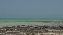Modern stromatolites landscape and the sea in SharkBay National Park Stock Footage