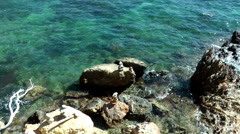Europe Spain Balearic Ibiza coves and landscapes 132 rocky coast, crystal water Stock Footage