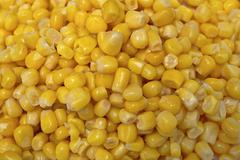 Stock Photo of raw canned corn
