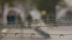 Barbed wire - stock footage
