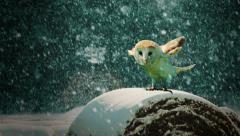An owl about to take off in the snow. Stock Footage