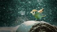 Stock Video Footage of An owl about to take off in the snow.