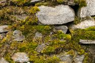 Stock Photo of Dry masonry stonewall with moss