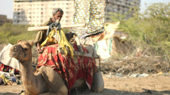 Strapping on a Camel Seat Stock Footage