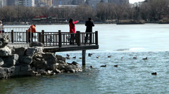 The man and women take photo at dock in Longtanhu Park in Beijing, China Stock Footage