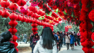 Stock Video Footage of People walk under the red lanterns at Ditan temple fair during Spring Festival