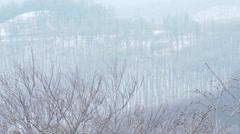 Winter Forest Hills Landscape 9 Stock Footage