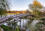 Stock Photo of Chicago Botanic Garden, Bridge to Japanese Garden