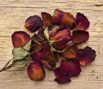 dry red roses on old wooden background - stock photo