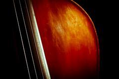 vintage double bass - stock photo