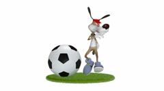 Amusing 3d dog football player. - stock footage