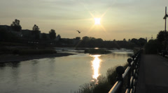 Sea birds Soar over river at sunset Stock Footage
