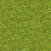 Meadow Grass. Seamless Texture. Stock Photos