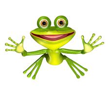 green frog - stock illustration