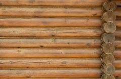 Wall from logs. Stock Photos