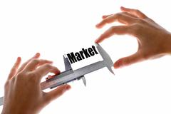 The size of our market Stock Illustration