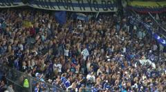 Fans, Audiences, Spectators Stock Footage