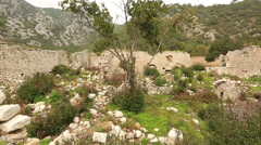Ancient city of Olympos 1 Stock Footage