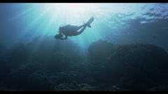 4K : wide, diver in shallows over reef Stock Footage