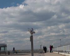 People watching airplanes on dusseldorf airport Stock Footage
