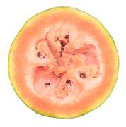 Overripe watermelon Stock Photos