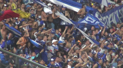 Fans Jumping, Holding Flags, Audiences, Spectators Stock Footage