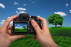 Landscape shooting Stock Illustration