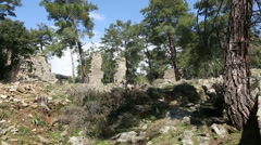 Ancient city of Seleucia (Lybre) 2 Stock Footage