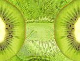Stock Illustration of food background with green kiwi slices.