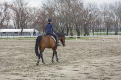 horsewoman - stock photo