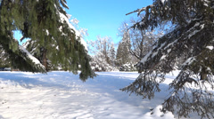 Winter Village - 41 - Snowy Trees, Road, Cars, Hills Stock Footage