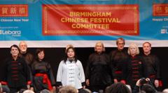 Yang Tai Chi Quan Martial Arts Demonstration Stock Footage