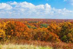 Autumn Vista - stock photo