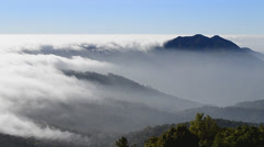Beautiful mist flowing on valley at doi inthanon national park of thailand Stock Footage
